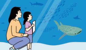 水族館で謎を解く親子